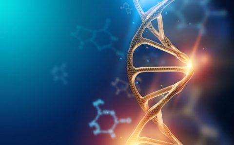 ThetaHealing® Basic DNA